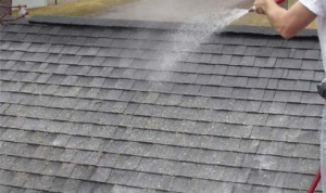 Roof Cleaning 1